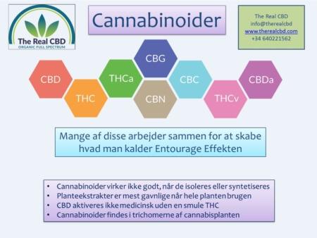 Cannabinoider DK