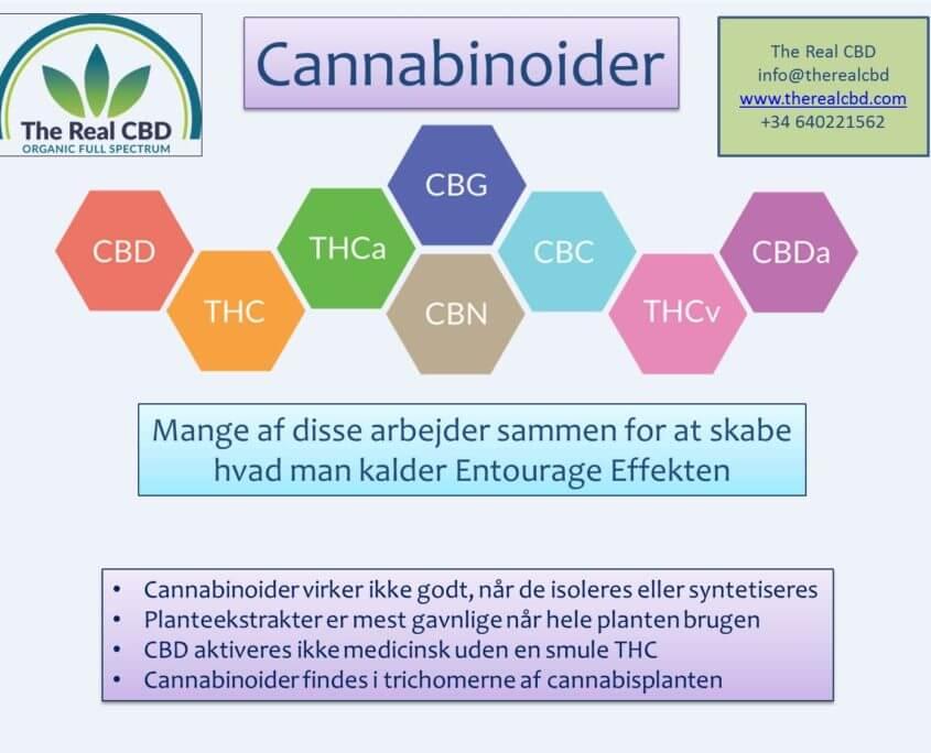 the-real-cbd-Cannabinoider DK