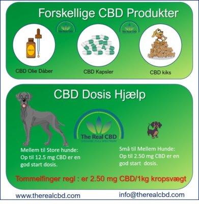 The Real CBD Info graphics