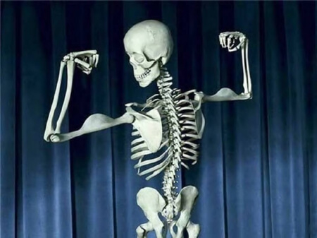 CBG the new cannabinoid will make your bones stronger