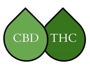 CBD / THC