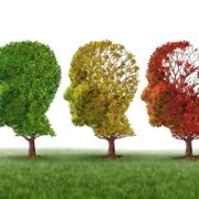 cbd oil against alzheimers