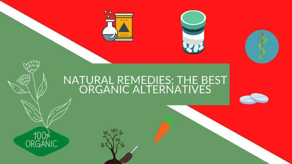 Natural Remedies: The Best Organic Alternatives