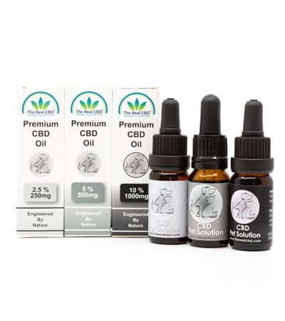 The-Real-CBD-Pet-solution-group-photo