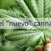 CBG el nuevo cannabinoide