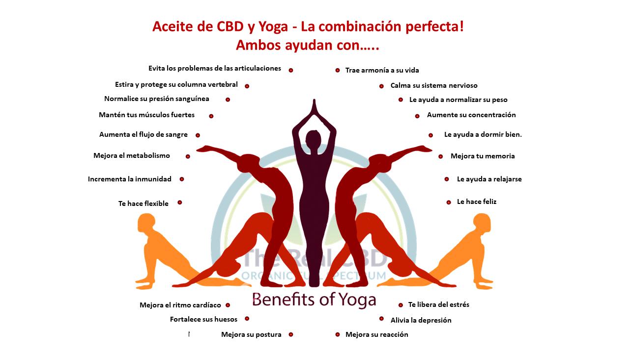The-Real-CBD-blog-beneficios-de-cbd-y-yoga-juntos