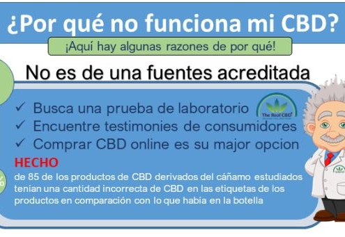 the-real-cbd-blog-porque-mi-cbd-no-funciona